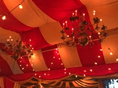ceiling/canopy