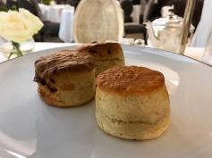 afternoon tea: fruit & reg scones