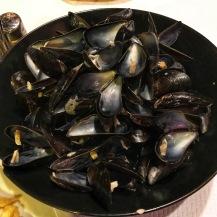 mussel empties